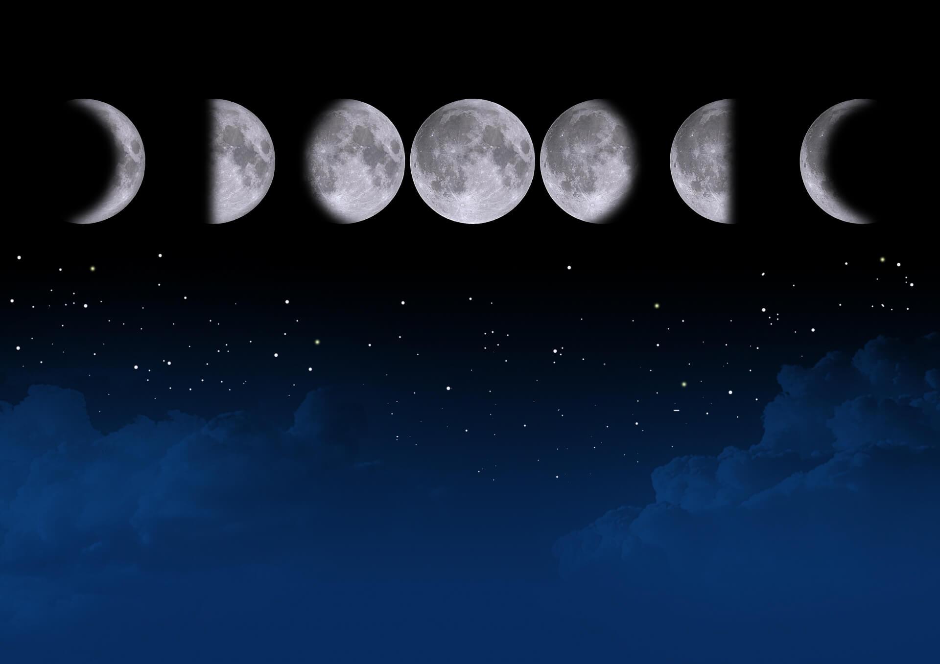 今日 の お 月 様