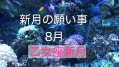 乙女座新月2019年8月新月の願い事